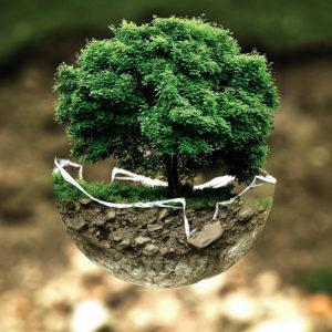 Hotel e Ristoranti Zero Waste: il nuovo progetto per la sostenibilità
