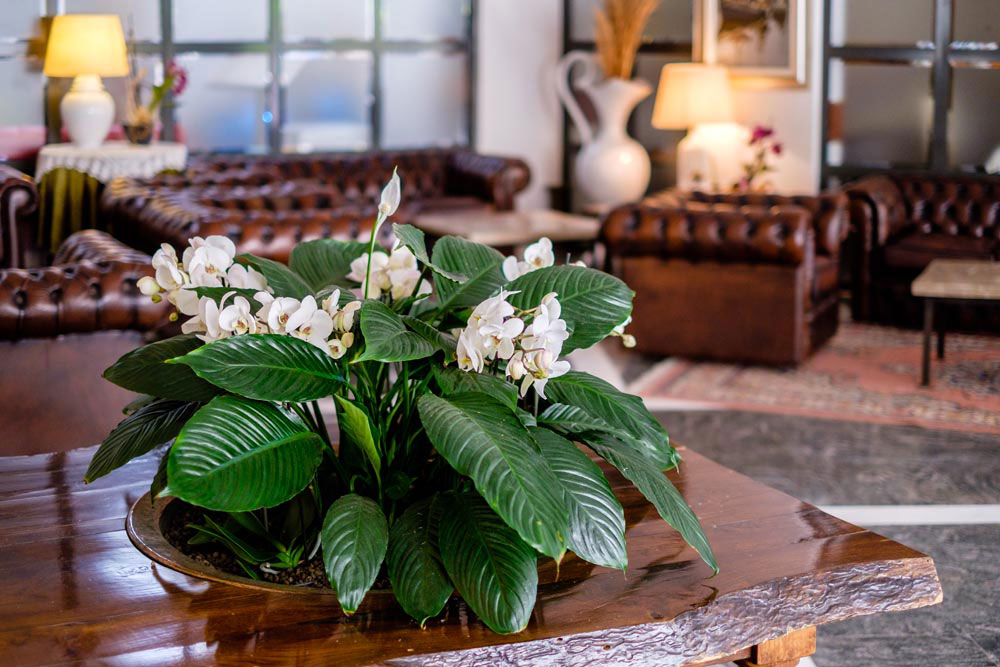Hotel Bristol – Bellaria - Immagine3